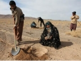 Iran observes International Day to combat desertification